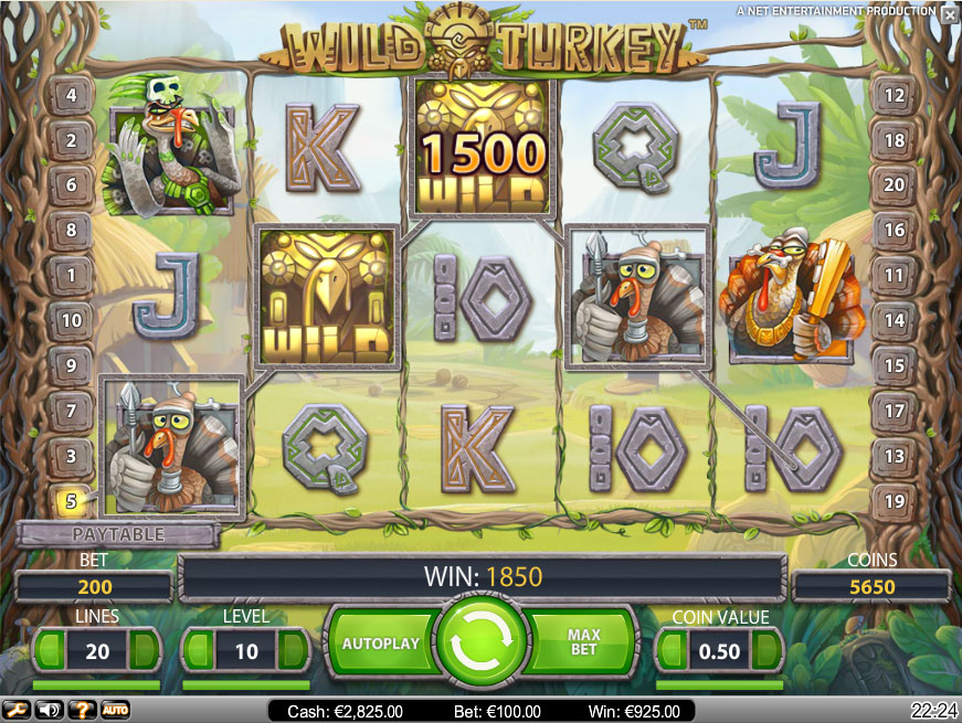 slot machine Wild Turkey