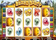 Bonus Bears slot machine online