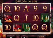 The Finer Reels of Life slot machine